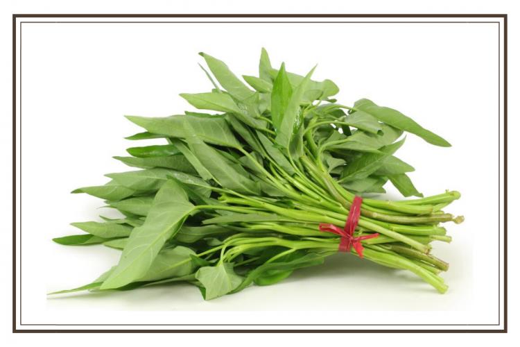 sayuran kangkung