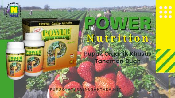 Power Nutrition (Khusus Buah)